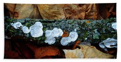 Beach Towel featuring the photograph The Forest Floor - Cascade Wi by Mary Machare