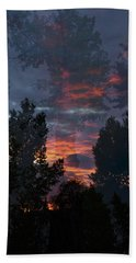 The Forest Through The Trees Beach Towel
