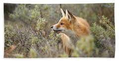 The Fox And Its Prey Beach Towel by Roeselien Raimond