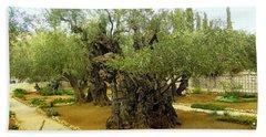 The Garden Of Gethsemane Beach Towel