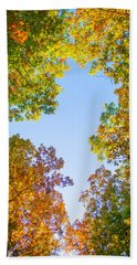 Beach Towel featuring the photograph The Glory Of Autumn by Parker Cunningham