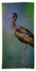 The Glossy Ibis Stroll Beach Towel