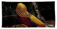 The Golden Pheasant Or Chinese Pheasant -atlanta Ga, Zoo Beach Towel