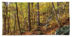 Beach Towel featuring the photograph The Golden Trail by Lori Coleman
