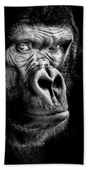 The Gorilla Large Canvas Art, Canvas Print, Large Art, Large Wall Decor, Home Decor Beach Towel by David Millenheft