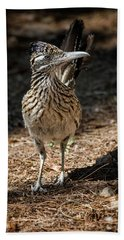 The Greater Roadrunner Walk  Beach Towel by Saija Lehtonen