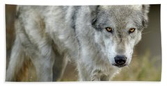 The Grey Wolf Shake Beach Towel