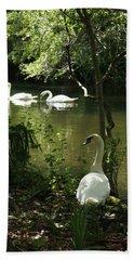 The Guard Swan Beach Sheet