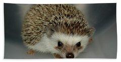 The Hedgehog Beach Sheet