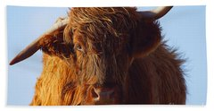 The Highland Cow Beach Towel by Nichola Denny