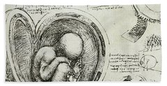 The Human Fetus In The Womb Beach Towel