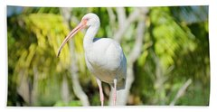 The Ibis Pose Beach Towel