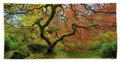The Japanese Maple Tree In Spring Beach Sheet