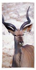 The Kudu Portrait 2 Beach Sheet by Ernie Echols