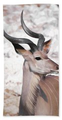 The Kudu Portrait Beach Towel by Ernie Echols