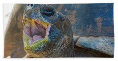 The Laughing Tortoise Beach Towel by Kenneth Albin