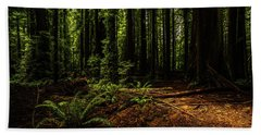 Beach Towel featuring the photograph The Light In The Forest No. 2 by TL Mair