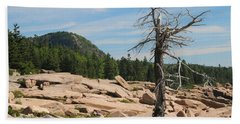Beach Towel featuring the photograph The Lone Tree by Living Color Photography Lorraine Lynch