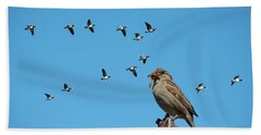 The Lonely Sparrow Beach Towel