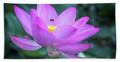 The Lotus And The Bee Beach Towel