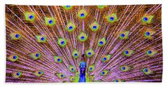 Beach Towel featuring the photograph The Majestic Peacock by D Davila