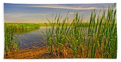 The Marshes Of Brazoria Beach Towel