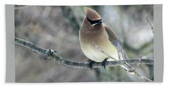 The Masked Cedar Waxwing Beach Towel