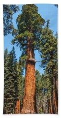 The Mckinley Giant Sequoia Tree Sequoia National Park Beach Towel
