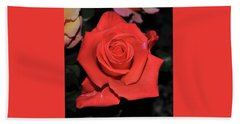 The Meaning Of A Red Rose Beach Towel by Jay Milo