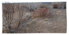 Beach Towel featuring the photograph The Mighty Santa Fe River by Rob Hans