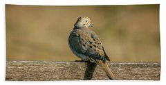 The Morning Dove Beach Towel