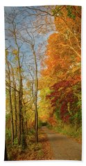 Beach Towel featuring the photograph The Path In Fall by Mark Dodd