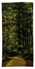 Beach Towel featuring the photograph The Path by TL Mair