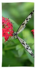 The Perfect Butterfly Land Beach Towel