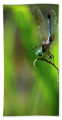 Beach Towel featuring the photograph The Performer Dragonfly Art by Reid Callaway