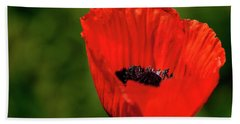 The Poppy Next Door Beach Towel
