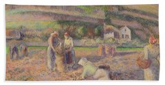 The Potato Harvest Beach Towel by Camille Pissarro