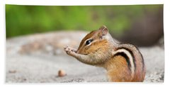 The Praying Chipmunk Beach Towel