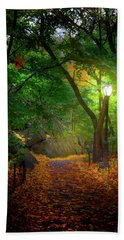 The Ramble In Central Park Beach Towel by Mark Andrew Thomas