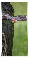 The Red Bellied Woodpecker Beach Towel by Bill Wakeley