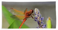 The Red Dragonfly Nbr.2 Beach Sheet