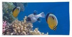 The Red Sea Underwater World Beach Towel