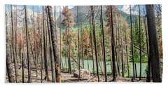 The Revealed View Beach Towel