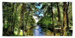 Beach Towel featuring the photograph The River At Covewood by David Patterson