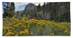 The Road To Mt. Charleston Natural Area Beach Towel