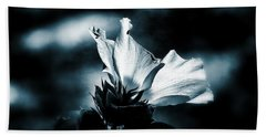 Beach Towel featuring the photograph The Rose Of Sharon by Allen Beilschmidt