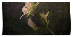 Beach Towel featuring the photograph The Scent Of Jasmines by Randi Grace Nilsberg