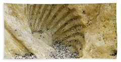 The Shell Fossil Beach Towel