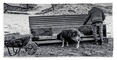 Beach Towel featuring the photograph The Shepherd by Keith Elliott