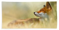 The Sleeping Beauty - Wild Red Fox Beach Towel by Roeselien Raimond